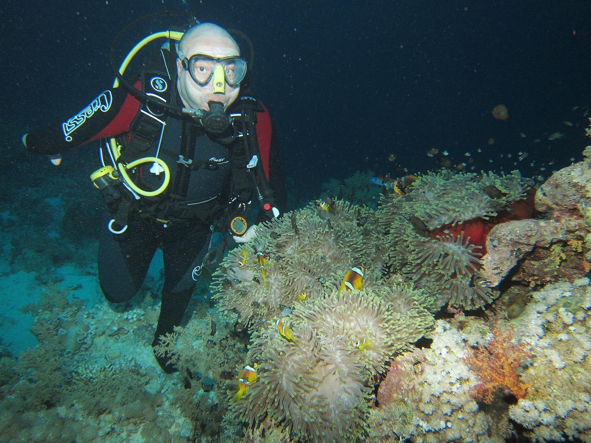 mar rojo   tambien debajo del agua