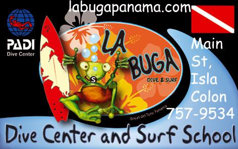 buceo en Bocas del Toro