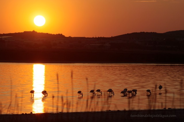 Villacañas - Laguna larga - m.de agua